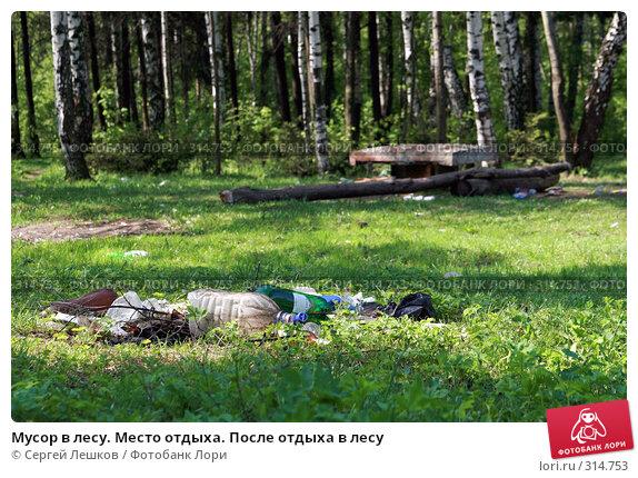 Мусор в лесу. Место отдыха. После отдыха в лесу, фото № 314753, снято 18 мая 2008 г. (c) Сергей Лешков / Фотобанк Лори