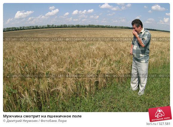 Купить «Мужчина смотрит на пшеничное поле», эксклюзивное фото № 327581, снято 24 июля 2005 г. (c) Дмитрий Неумоин / Фотобанк Лори