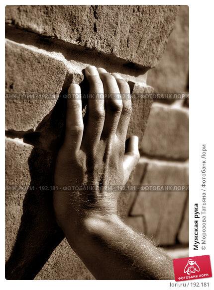 Мужская рука, фото № 192181, снято 22 августа 2004 г. (c) Морозова Татьяна / Фотобанк Лори