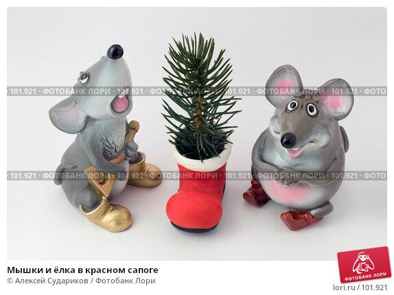 Мышки и ёлка в красном сапоге, фото № 101921, снято 21 октября 2007 г. (c) Алексей Судариков / Фотобанк Лори