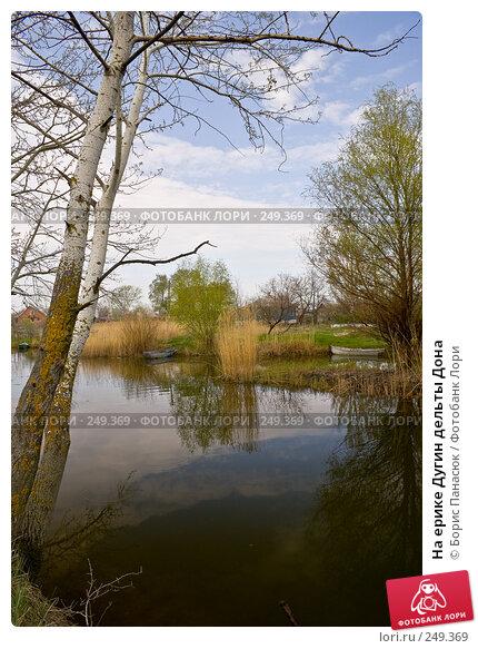 На ерике Дугин дельты Дона, фото № 249369, снято 11 апреля 2008 г. (c) Борис Панасюк / Фотобанк Лори