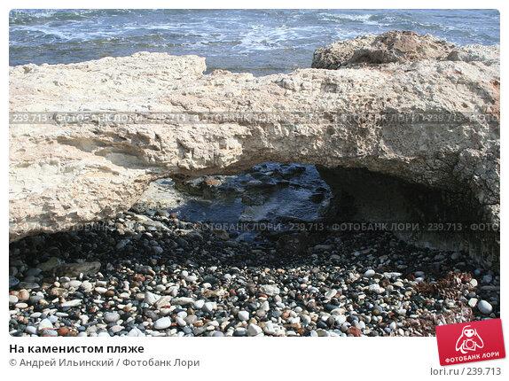 На каменистом пляже, фото № 239713, снято 17 февраля 2008 г. (c) Андрей Ильинский / Фотобанк Лори