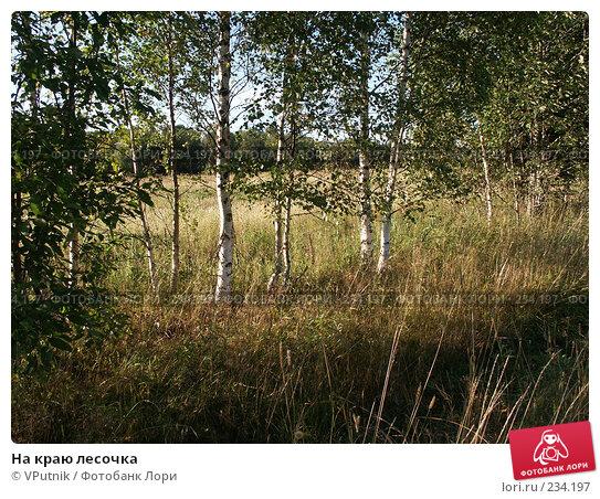 На краю лесочка, фото № 234197, снято 22 августа 2005 г. (c) VPutnik / Фотобанк Лори