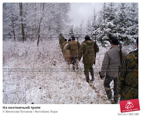 На охотничьей тропе, фото № 263189, снято 5 ноября 2007 г. (c) Вячеслав Потапов / Фотобанк Лори