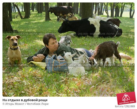 На отдыхе в дубовой роще, фото № 292069, снято 20 мая 2008 г. (c) Игорь Момот / Фотобанк Лори