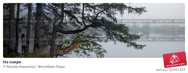 На озере (2013 год). Стоковое фото, фотограф Nicolas Naoumov / Фотобанк Лори