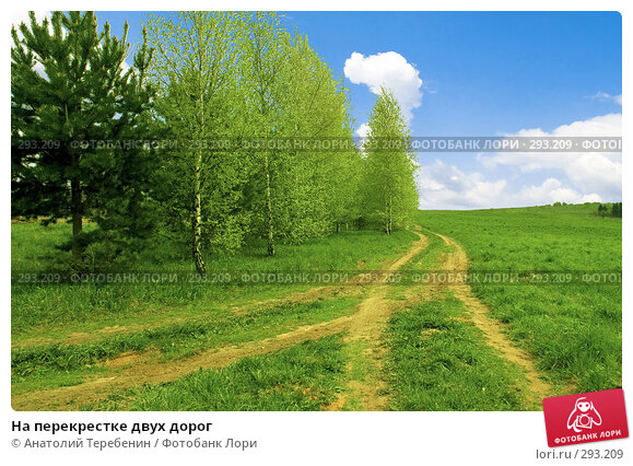 На перекрестке двух дорог, фото № 293209, снято 2 мая 2008 г. (c) Анатолий Теребенин / Фотобанк Лори