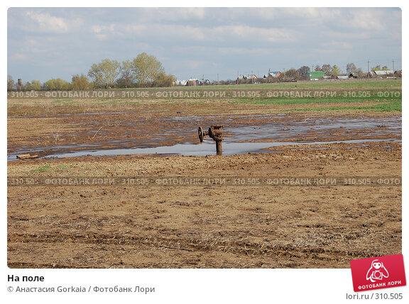 На поле, фото № 310505, снято 19 апреля 2008 г. (c) Анастасия Gorkaia / Фотобанк Лори