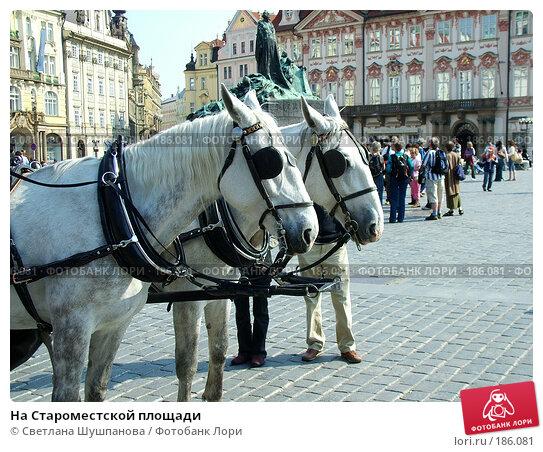 На Староместской площади, фото № 186081, снято 7 мая 2006 г. (c) Светлана Шушпанова / Фотобанк Лори