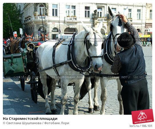 На Староместской площади, фото № 186101, снято 7 мая 2006 г. (c) Светлана Шушпанова / Фотобанк Лори