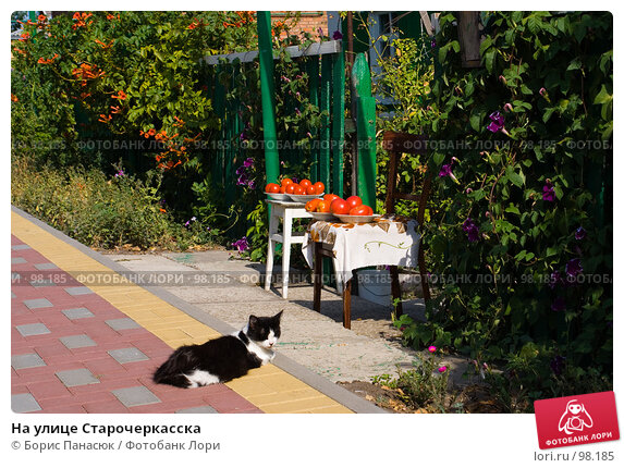 На улице Старочеркасска, фото № 98185, снято 18 августа 2007 г. (c) Борис Панасюк / Фотобанк Лори