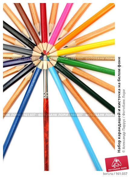 Набор карандашей и кисточка на белом фоне, фото № 161037, снято 9 октября 2006 г. (c) Александр Паррус / Фотобанк Лори