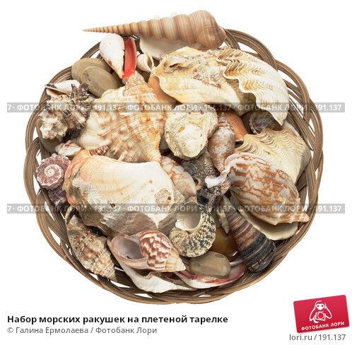 Набор морских ракушек на плетеной тарелке, фото № 191137, снято 26 января 2008 г. (c) Галина Ермолаева / Фотобанк Лори