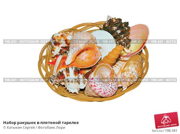 Набор ракушек в плетеной тарелке, фото № 198341, снято 18 ноября 2007 г. (c) Катыкин Сергей / Фотобанк Лори