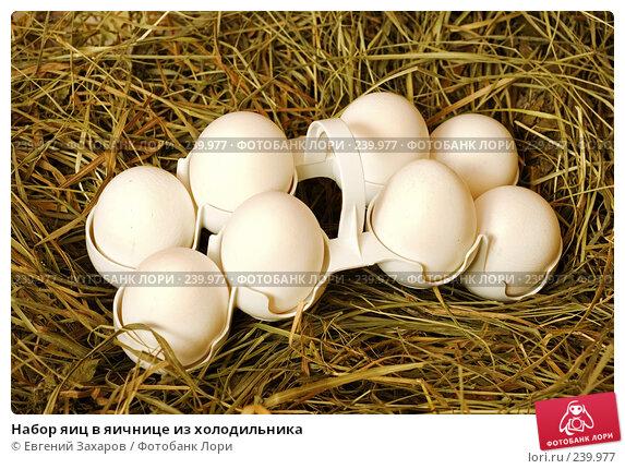 Набор яиц в яичнице из холодильника, эксклюзивное фото № 239977, снято 25 марта 2008 г. (c) Евгений Захаров / Фотобанк Лори