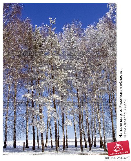 Начало марта. Рязанская область., фото № 231325, снято 22 марта 2008 г. (c) УНА / Фотобанк Лори