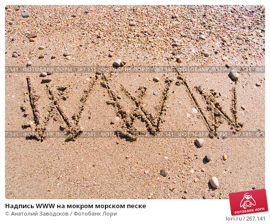 Надпись WWW на мокром морском песке, фото № 267141, снято 14 сентября 2006 г. (c) Анатолий Заводсков / Фотобанк Лори