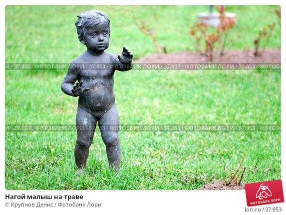 Нагой малыш на траве, фото № 37053, снято 29 марта 2007 г. (c) Крупнов Денис / Фотобанк Лори