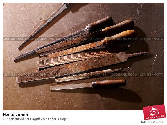 Купить «Напильники», фото № 257185, снято 8 октября 2005 г. (c) Кравецкий Геннадий / Фотобанк Лори