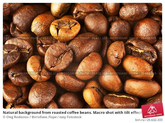 Купить «Natural background from roasted coffee beans. Macro shot with tilt effect.», фото № 25632333, снято 9 января 2015 г. (c) easy Fotostock / Фотобанк Лори