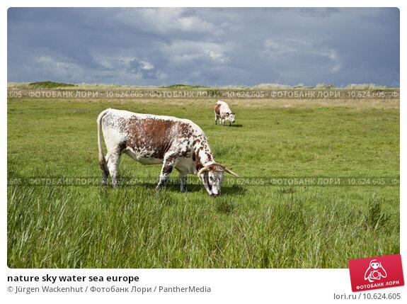 nature sky water sea europe. Стоковое фото, фотограф Jürgen Wackenhut / PantherMedia / Фотобанк Лори