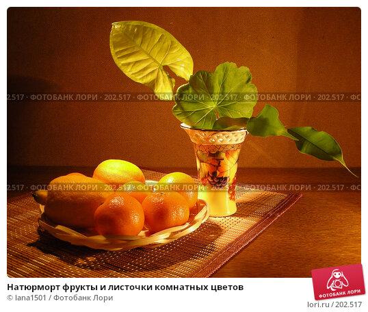 Натюрморт фрукты и листочки комнатных цветов, эксклюзивное фото № 202517, снято 26 января 2008 г. (c) lana1501 / Фотобанк Лори