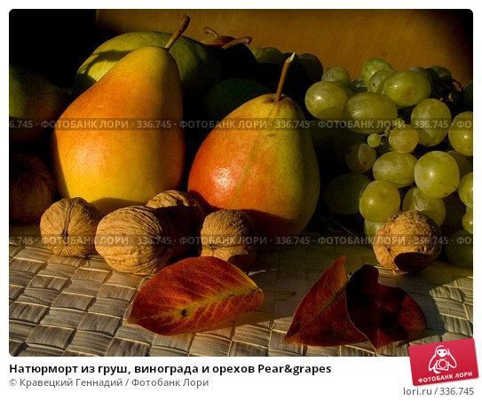Натюрморт из груш, винограда и орехов Pear&grapes, фото № 336745, снято 14 сентября 2003 г. (c) Кравецкий Геннадий / Фотобанк Лори