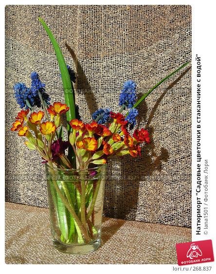 """Натюрморт """"Садовые цветочки в стаканчике с водой"""", эксклюзивное фото № 268837, снято 1 мая 2008 г. (c) lana1501 / Фотобанк Лори"""