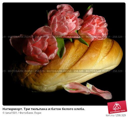 Натюрморт. Три тюльпана и батон белого хлеба., эксклюзивное фото № 258329, снято 3 апреля 2008 г. (c) lana1501 / Фотобанк Лори