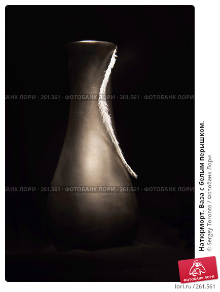 Натюрморт. Ваза с белым перышком., фото № 261561, снято 1 апреля 2008 г. (c) Sergey Toronto / Фотобанк Лори