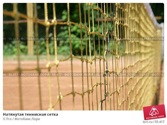 Купить «Натянутая теннисная сетка», фото № 55417, снято 23 июня 2007 г. (c) Fro / Фотобанк Лори