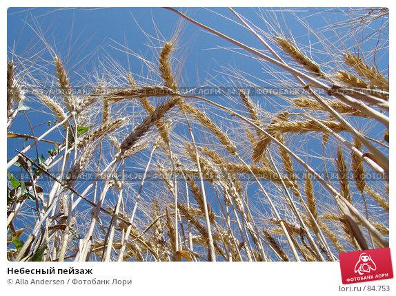 Небесный пейзаж, фото № 84753, снято 5 июля 2006 г. (c) Alla Andersen / Фотобанк Лори