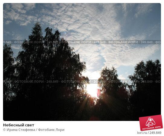 Небесный свет, фото № 249849, снято 22 августа 2007 г. (c) Ирина Стюфеева / Фотобанк Лори