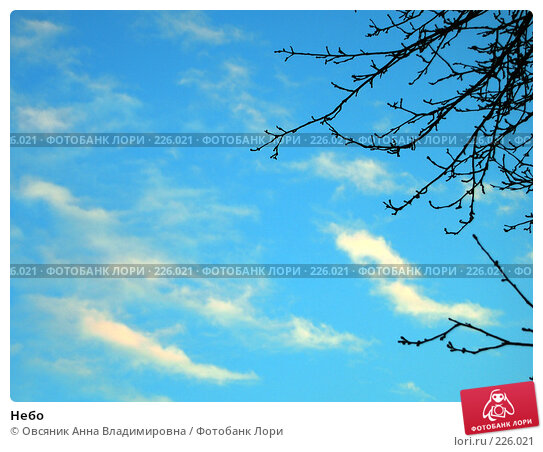 Купить «Небо», фото № 226021, снято 15 марта 2008 г. (c) Овсяник Анна Владимировна / Фотобанк Лори