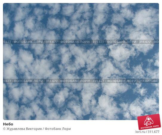 Небо, фото № 311677, снято 22 ноября 2007 г. (c) Журавлева Виктория / Фотобанк Лори
