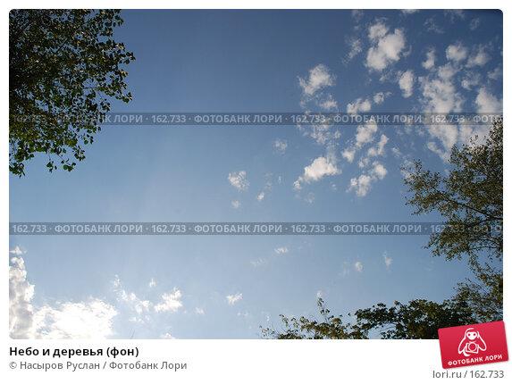 Купить «Небо и деревья (фон)», фото № 162733, снято 30 августа 2007 г. (c) Насыров Руслан / Фотобанк Лори