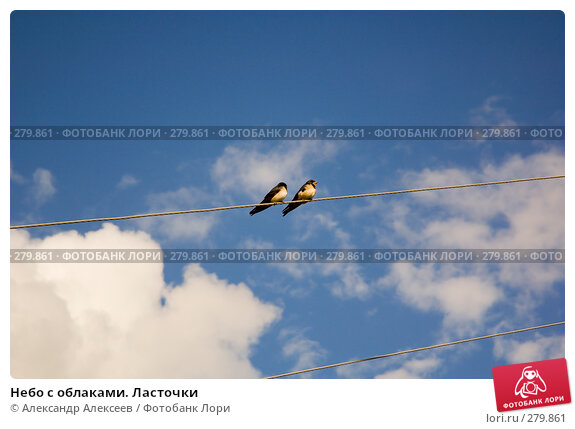 Небо с облаками. Ласточки, эксклюзивное фото № 279861, снято 24 августа 2005 г. (c) Александр Алексеев / Фотобанк Лори