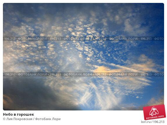 Купить «Небо в горошек», фото № 196213, снято 29 января 2008 г. (c) Лия Покровская / Фотобанк Лори