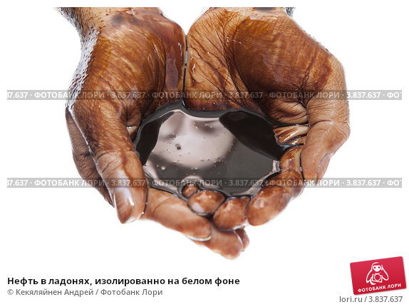 Купить «Нефть в ладонях, изолированно на белом фоне», фото № 3837637, снято 15 сентября 2012 г. (c) Кекяляйнен Андрей / Фотобанк Лори