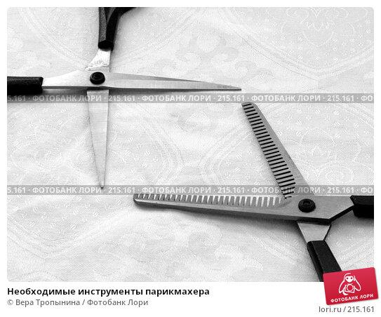 Необходимые инструменты парикмахера, фото № 215161, снято 19 февраля 2008 г. (c) Вера Тропынина / Фотобанк Лори