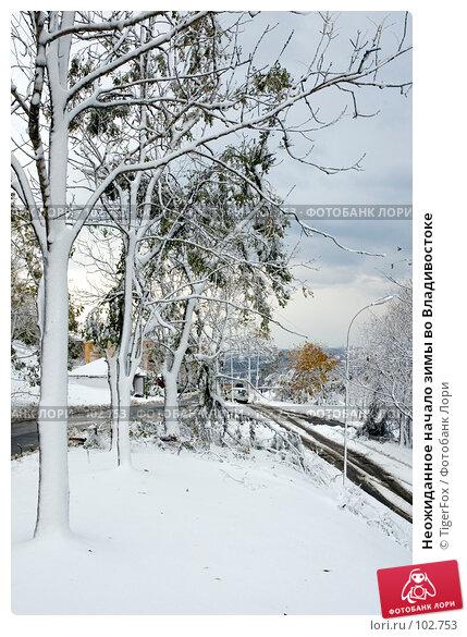 Неожиданное начало зимы во Владивостоке, фото № 102753, снято 30 марта 2017 г. (c) TigerFox / Фотобанк Лори