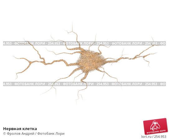 Нервная клетка, фото № 254953, снято 22 октября 2016 г. (c) Фролов Андрей / Фотобанк Лори