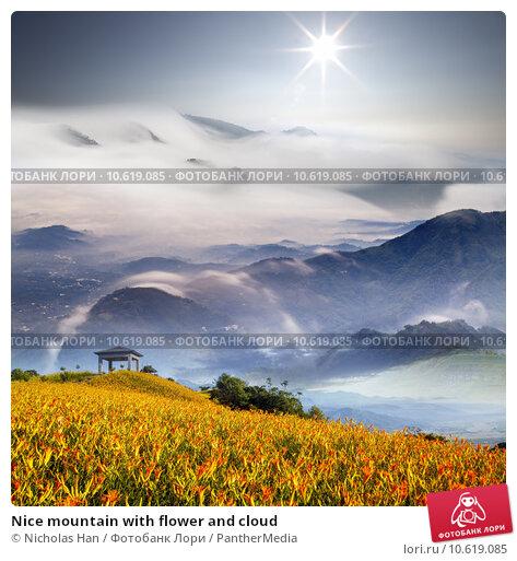 Nice mountain with flower and cloud. Стоковое фото, фотограф Nicholas Han / PantherMedia / Фотобанк Лори