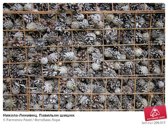 Никола-Ленивец. Павильон шишек, фото № 299517, снято 10 мая 2008 г. (c) Parmenov Pavel / Фотобанк Лори