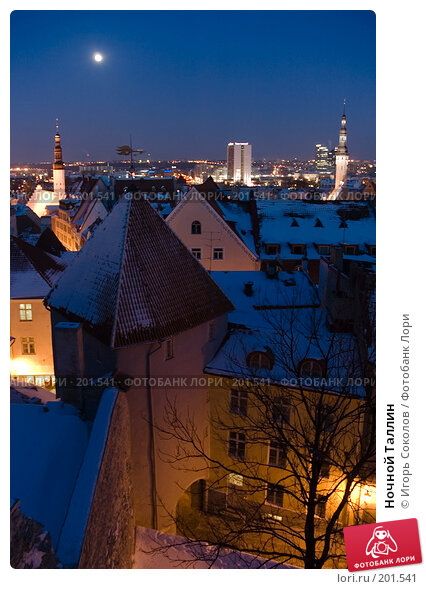 Ночной Таллин, фото № 201541, снято 23 февраля 2005 г. (c) Игорь Соколов / Фотобанк Лори