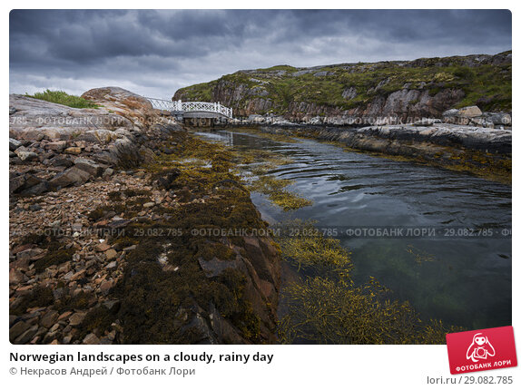 Купить «Norwegian landscapes on a cloudy, rainy day», фото № 29082785, снято 4 августа 2018 г. (c) Некрасов Андрей / Фотобанк Лори