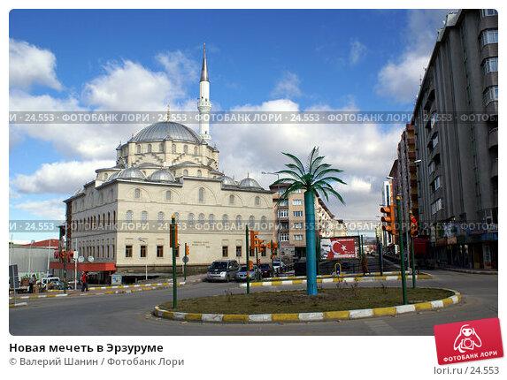 Новая мечеть в Эрзуруме, фото № 24553, снято 16 ноября 2006 г. (c) Валерий Шанин / Фотобанк Лори