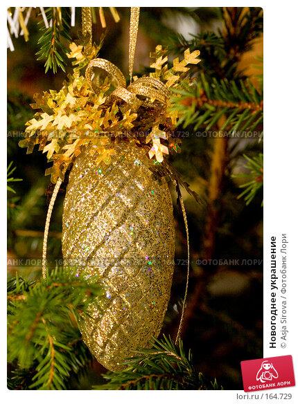 Купить «Новогоднее украшение», фото № 164729, снято 24 декабря 2007 г. (c) Asja Sirova / Фотобанк Лори