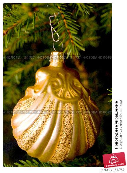Новогоднее украшение, фото № 164737, снято 24 декабря 2007 г. (c) Asja Sirova / Фотобанк Лори