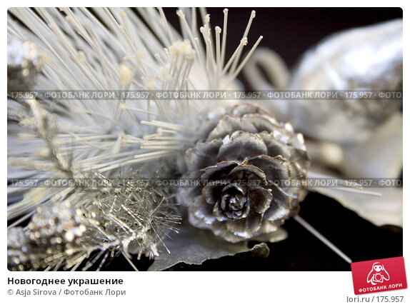 Новогоднее украшение, фото № 175957, снято 13 января 2008 г. (c) Asja Sirova / Фотобанк Лори